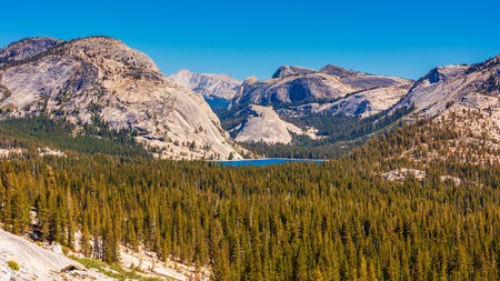 Yosemite National Park is full of so many natural wonders that it's easy to fill an entire day here