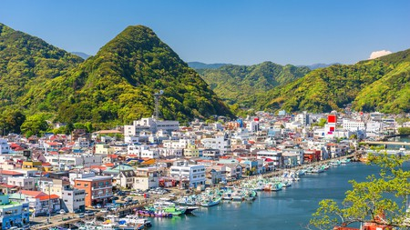 Head to Shimoda for some of the best seafood in the world