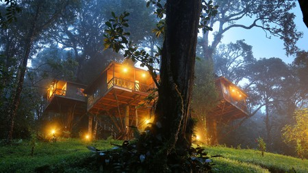 Munnar is home to some of south India's most ambient resorts, many of which are set into lush hillsides