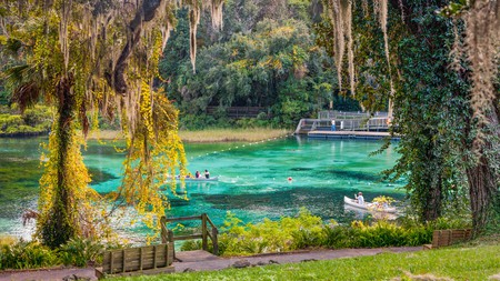 Grab a canoe for a peaceful afternoon at Rainbow Springs