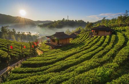 Ban Rak Thai in Mae Hong Son is a beautiful place to explore