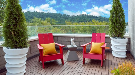 You and your pet will feel right at home at the Aloft Asheville Downtown
