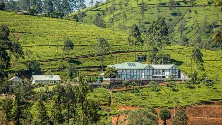 Stay amid tealeaf-carpeted panoramas at the Amaya Langdale, near Nuwara Eliya