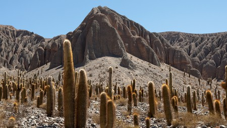 The area around Salta is home to atmospheric desert landscapes