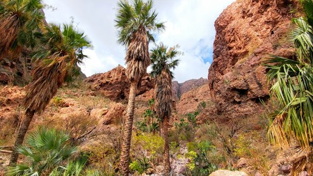 Hiking through Nacapule Canyon is one of the many activities in Sonora