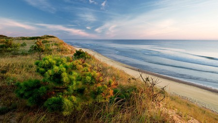 Explore parts of the Cape Cod National Seashore with your pup