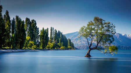Lake Wanaka is one of the most iconic and beautiful locations in all of New Zealand