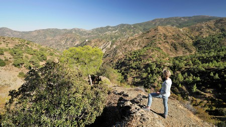 Get a flavour of the Cyprus mountains with a hike in the Troodos mountain range
