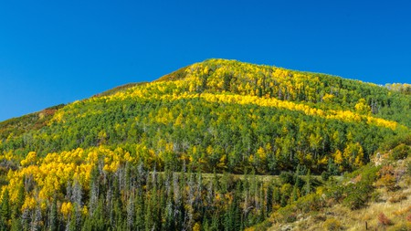 Colorado is just as stunning in the fall as it is in winter