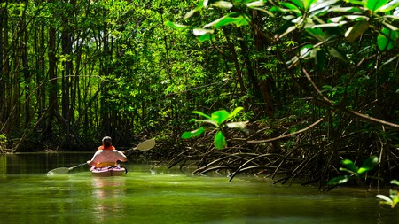 Costa Rica is a great place to reconnect with nature and yourself
