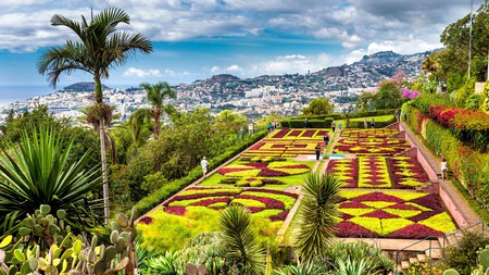 Tour the Botanical Gardens in Madeira to see tropical and endemic plant species