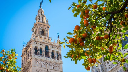 The bell tower of the Cathedral of Santa Maria de la Sede represents Seville's unique blend of cultures