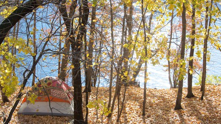Camping in Massachusetts allows for total immersion in the state's diverse nature