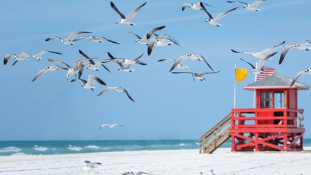 Florida's Siesta Key is considered one of the best beaches in the US