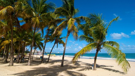 When it comes to pristine beaches and ancient palms, San Juan in Puerto Rico is no exception
