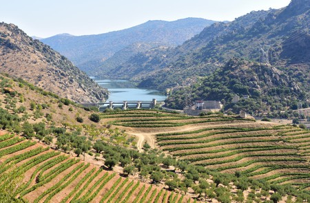 The Parque Natural do Douro Internacional sits on the border between Spain and Portugal