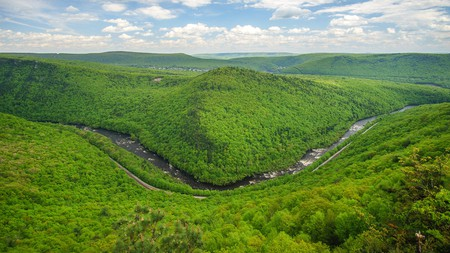 The Pocono Mountains make the perfect spot to enjoy the great outdoors with your four-legged friend