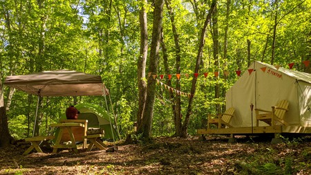Some campsites in Connecticut sit on working farms, providing a unique experience