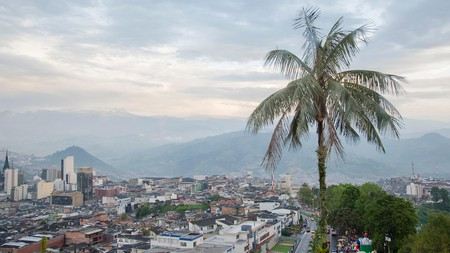 2AAGHT2 Aerial view of Manizales, Colombia, with a palm tree