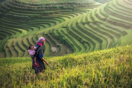 With a country rich in ancient customs and respectful culture, Vietnam is a must-visit if you're keen to learn more about history