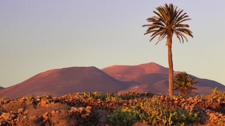 Lanzarote has extraordinary volcanic landscapes, as seen in Timanfaya National Park