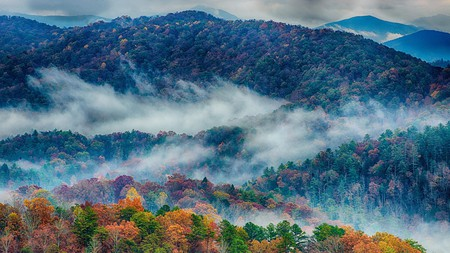 Tennessee is fringed by the beautiful forests of the Great Smoky Mountains