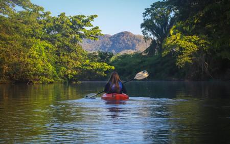 When visiting Punta Gorda, explore the Moho River by kayak