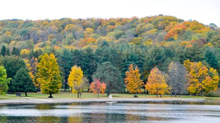 Staying in Red House means you're close to the colorful fall foliage of Lake Allegany State Park