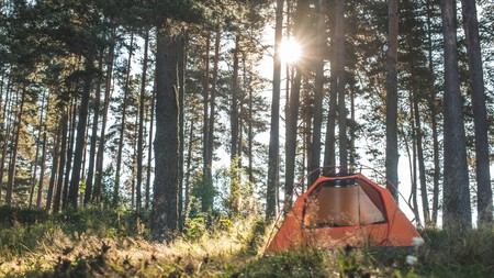 Get in touch with nature by camping