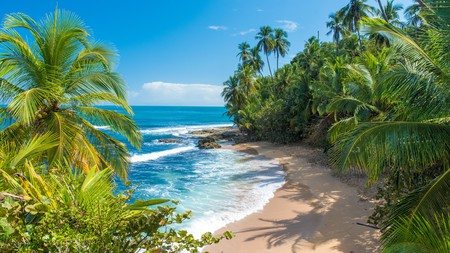 This piece of Caribbean paradise is in Manzanillo, south of Puerto Viejo de Talamanca