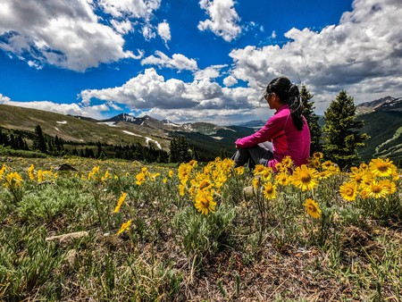 Surrounded by daisies on Kokomo Pass, Colorado Trail, Breckenridge, Colorado