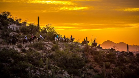 Explore Arizona's endless cacti fields, rolling waterfalls and red-rock landscapes on horseback for a truly authentic experience