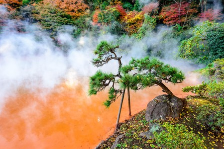 Experience a unique part of Japanese culture by bathing in the country's hot springs, known as onsen