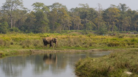 With such a wide diversity of landscapes and wildlife, Nepal's natures reserves are a wonder to behold