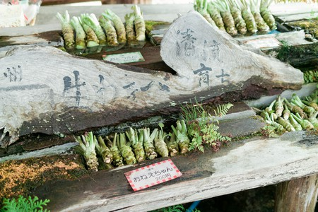 Wasabi for sale in Nagano, Japan | © t-mizo/Flickr