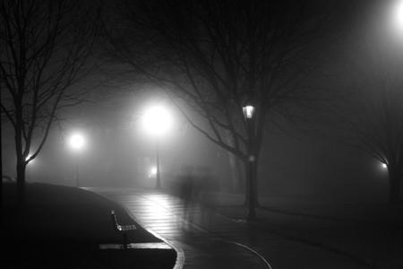 Haunted Park | © Jesse Bowser/Unsplash