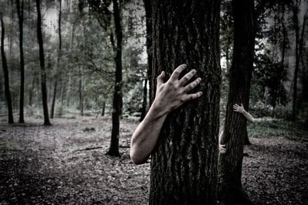 Haunted Forest| © Simon Wijers/Unsplash