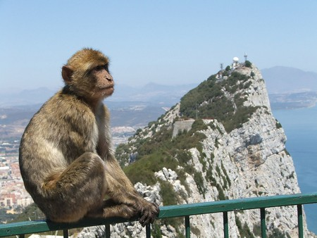 Things To Do And See In Gibraltar