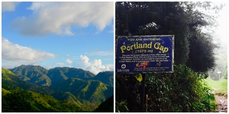 Blue Mountain Peak Hike| Courtesy of Caribbean Cables