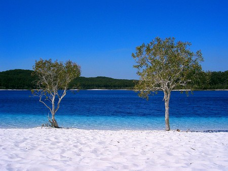 Fraser Island a06 lake mckenzie