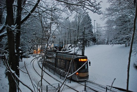 A Brussels tram passing the capital's Heizel domain in winter l © Stephane Mignon / Flickr