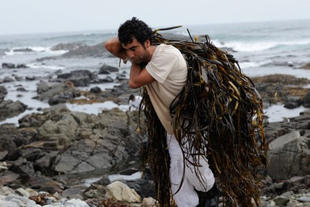 A haul of seaweed