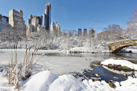 c39c9d0e73 15 Reasons Winter is the Best Time to Visit New York