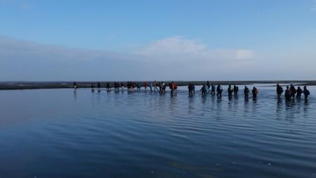 Wadden-Sea-national-Park-west-Jutland