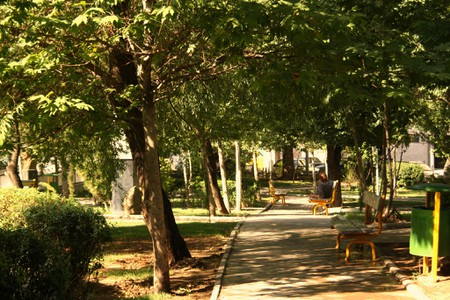 There are many great places to BBQ and picnic in Tehran