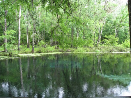 6 Cool Swimming Holes to Discover in Florida