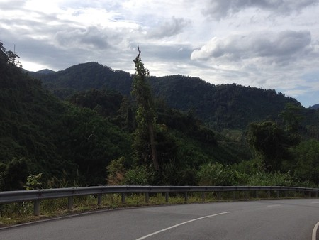 The Ho Chi Minh Road winding through the jungle | Sam Roth