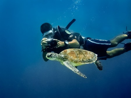 Experience world class diving experience in Borneo   © William Warby / Flickr