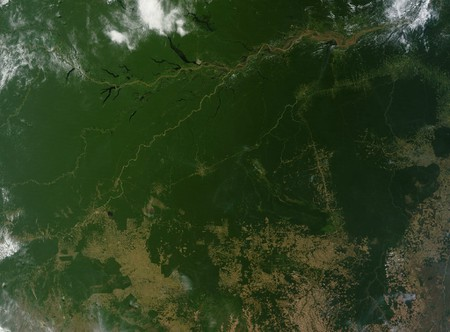 The mighty Amazon rainforest as seen from space