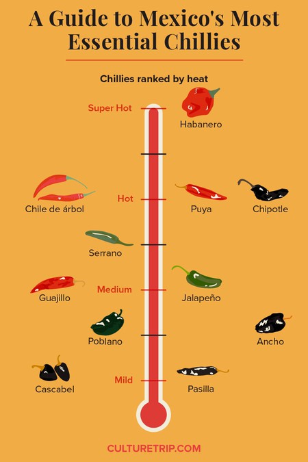A Guide to Mexico's Most Essential Chillies_02